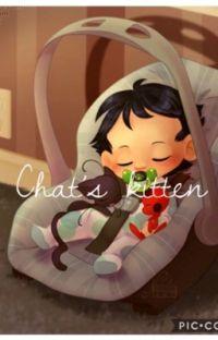 Chat's kitten.  cover