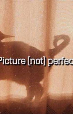 [Trans] picture (not) perfect | jjk × pjm |
