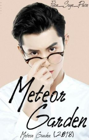 Meteor Garden  Dylan Wang   √ by F-Priestly