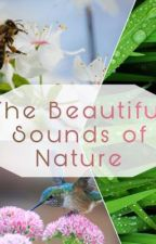 The Beautiful Sounds of Nature  by shondae2