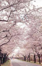 Cinta yang Bersemi di Kos-kos-an by samushou_25