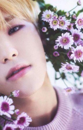 smile flower    soonhoon by renjjjun