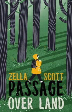 Passage Over Land by zellandia