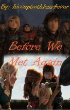 Before We Met Again (HTTYD One-Shots) by hiccuptoothless4ever