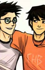 Percy Jackson Goes To Hogwarts by Solangelo4Life12