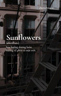 [cheolhan.] hoa hướng dương