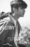 THE DESTINY(completed) cover