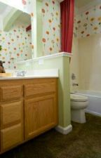 Carpeted bathroom by gizaGearbox