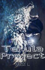THE TEKULA PROJECT by AuthorAnon_