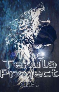THE TEKULA PROJECT cover