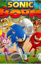 Sonic Boom (Characters) X Reader - Book 1 (Completed) by CandyVelvet_Secret