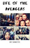 Life Of Avengers  cover