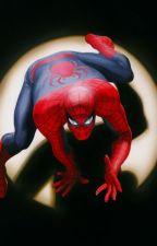The Amazing Spider-Man by Kapiushon01