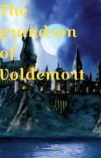 Grandson of Voldemort (On hiatus) by Kindainterested1