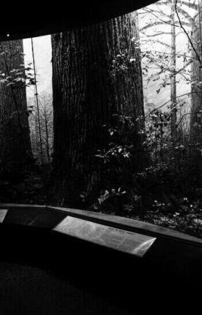 GUARDIAN   OF   BROOKLYN. by GIGANT0R
