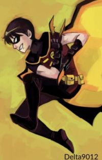 Robin |Young Justice Fanfiction| cover