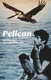 Pelican » Zarry ✔ cover