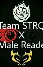 Team STRQ X Male Reader by Dankdank5