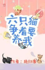 Sáu con mèo tranh nhau muốn nuôi ta by diemmatcaccv