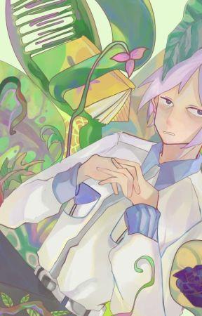 Flower Crown    [Toshiki Minegishi x Reader] by Gin0w0