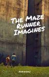 The Maze Runner Imagines cover