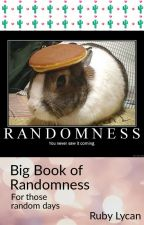 Book of Randomness by IdkAnimeDragon