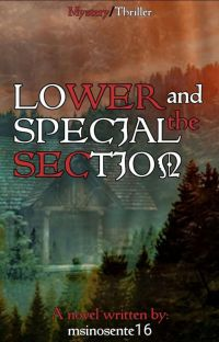 Lower and the Special Section cover