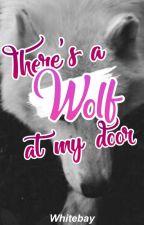 There's A Wolf At My Door | B X B X B by buttercuppoptop