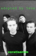 Adopted By 5SOS by veratiserum
