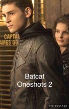 Batcat One-Shots 2 by fanfic_writing_girl