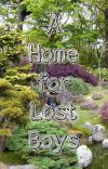 A Home for Lost Boys cover