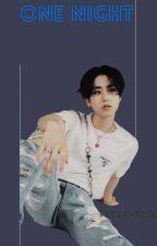 One Night (Han Jisung x-reader) by MissDevoured