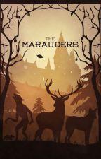 Los Merodeadores | La primera Guerra mágica by EpicGirl47