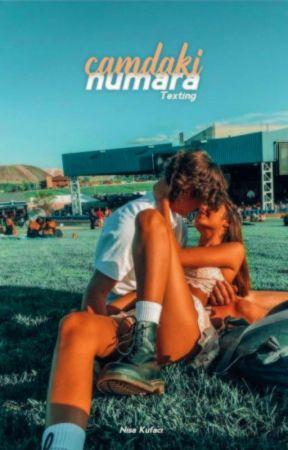 Camdaki Numara ❦ Texting by mayneymishera