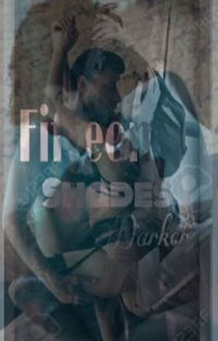 18+ FIFTEEN SHADES DARKER  cover
