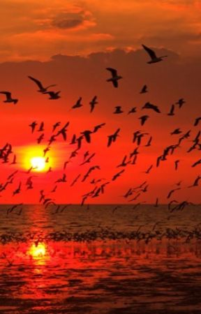 Red Sky At Morning (Short Story) by sophiasbadvibe