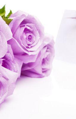 HẠNH PHÚC GIỐNG NHƯ MỘT ĐOÁ HOA-PHỈ NGÃ TƯ TỒN(FULL)|ღTử Vi Cácღ