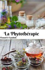 La Phytothérapie by ElhiahAlyn