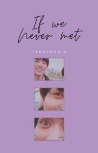 IF WE NEVER MET ✓ cover