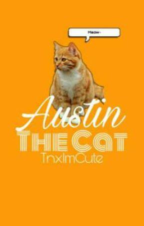 Austin The Cat by krstvs