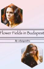 Flower Fields in Budapest (Natasha Romanoff x Wanda Maximoff) AU by whyisgam0ra