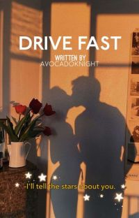 Drive Fast   ✓ cover