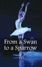 From a Swan to a Sparrow by Kath882
