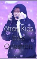 Stray Kids Ship Oneshots by Lovely_leeknow