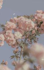 Bungou Stray Dogs Oneshots by -HanaYori-