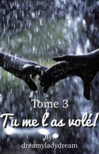 TOME 3 - Tu me l'as volé!  cover