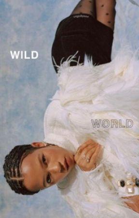 WILD WORLD ━━ skins by ungodIyhour