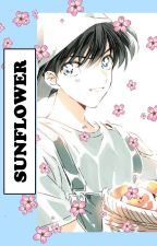 Sunflower |Kudo Shinichi x M! Reader| by SugaryyHoneyyy