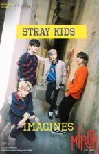    Stray Kids Imagines    (Mostly Smut) by lordjisooshelpme