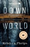Down World (Book 1 of the Down World Series) cover